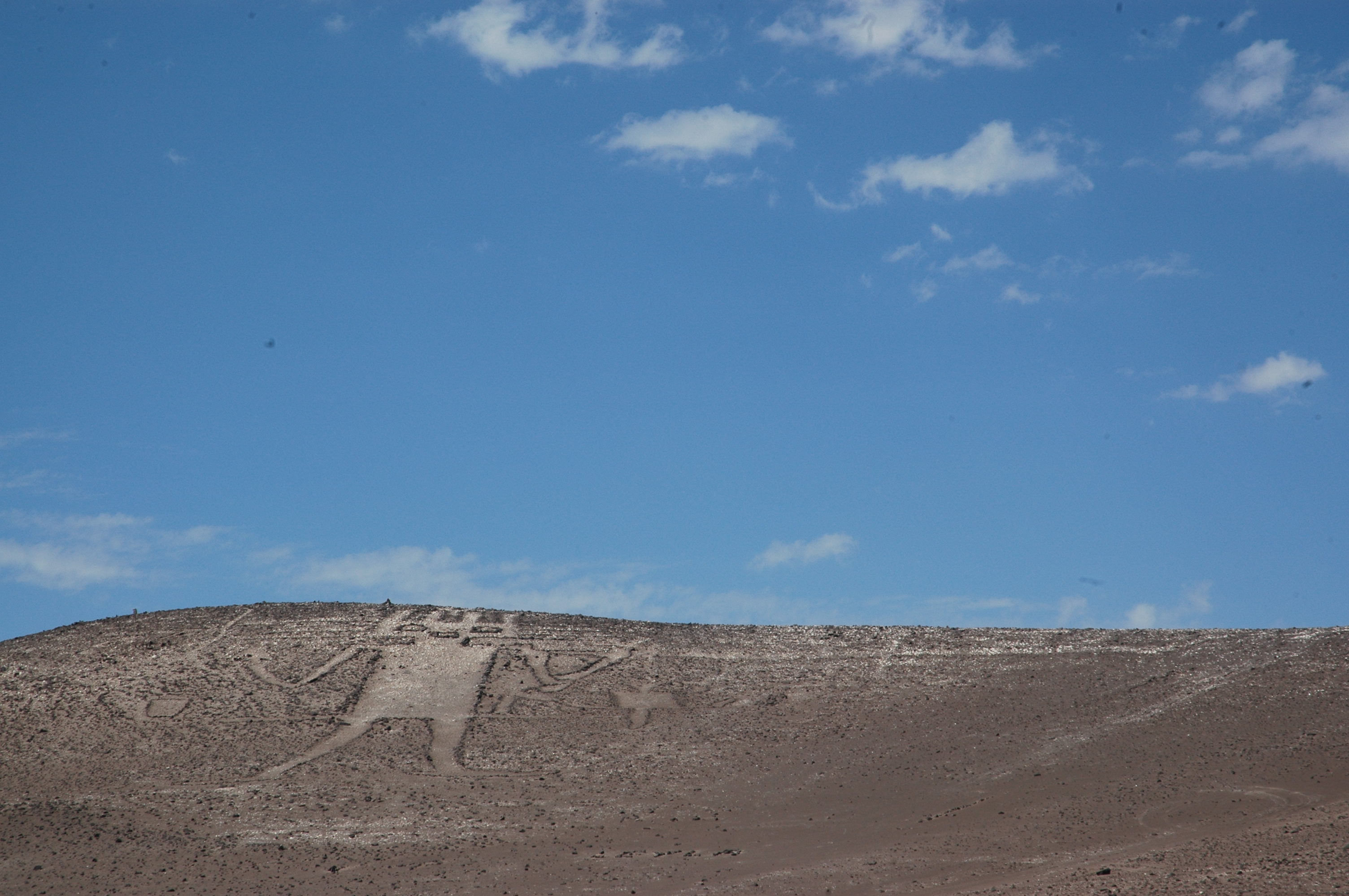 JW_SIGP_LABELS_08 The_Giant_of_Atacama 1.jpg