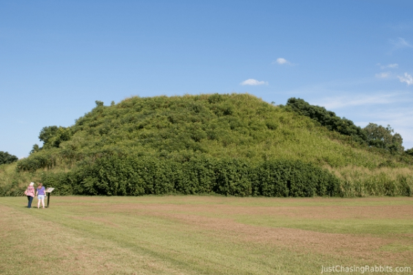 Уинтервильские курганы (Winterville Mounds)